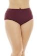Raisins Curve Maroon Plus Size Sayulita Bikini Bottom